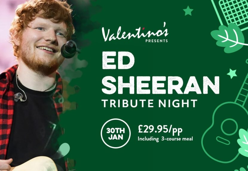 Ed Sheeran Tribute Night